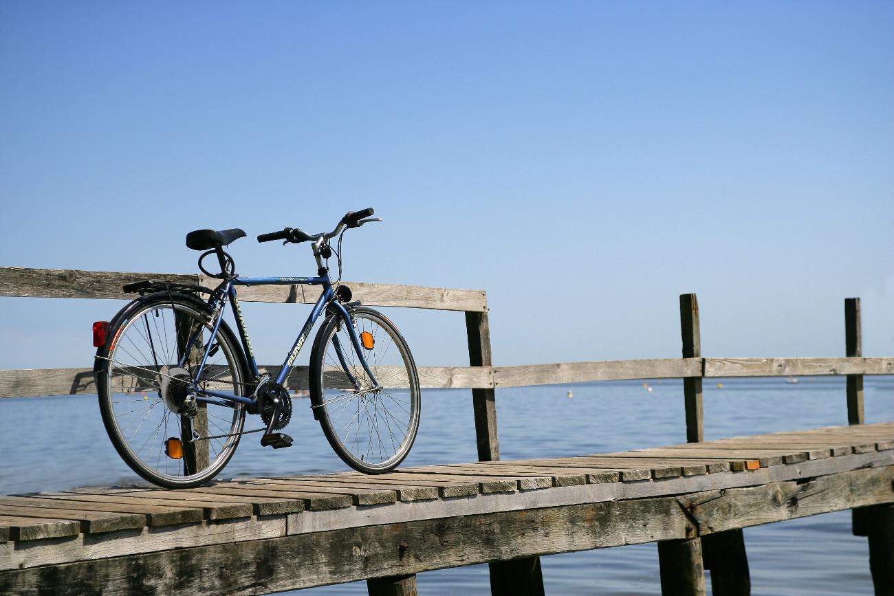 Photo N°1 : CYCLES MIRLORET